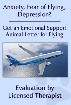 Emotional support dog certification